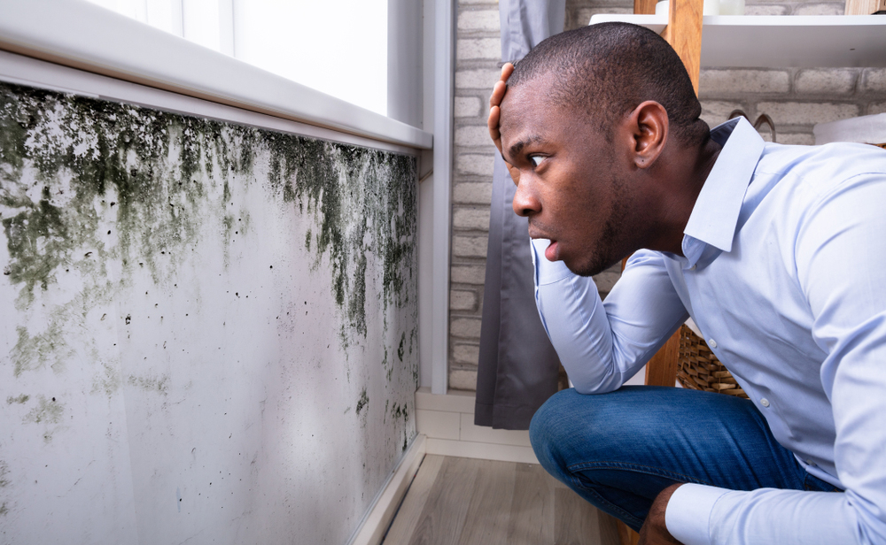 A potential house buyer, shocked by the sight of mold on a wall