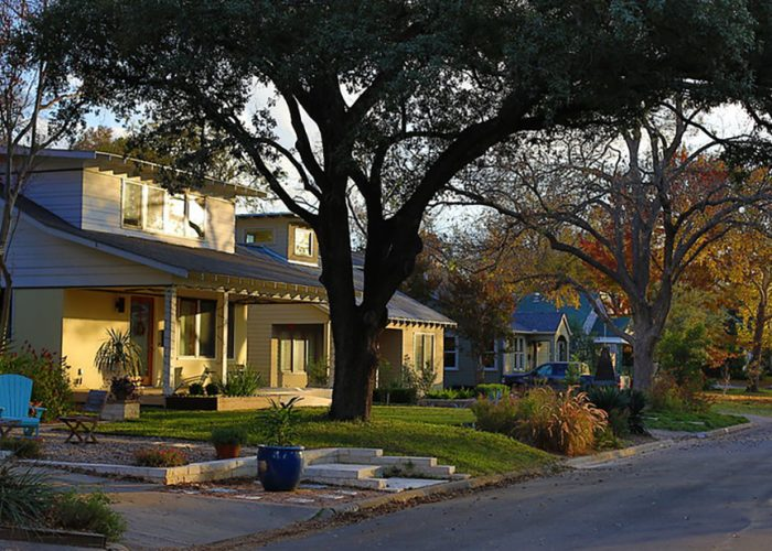 A tree lined street in Austin, TX in the late afternoon